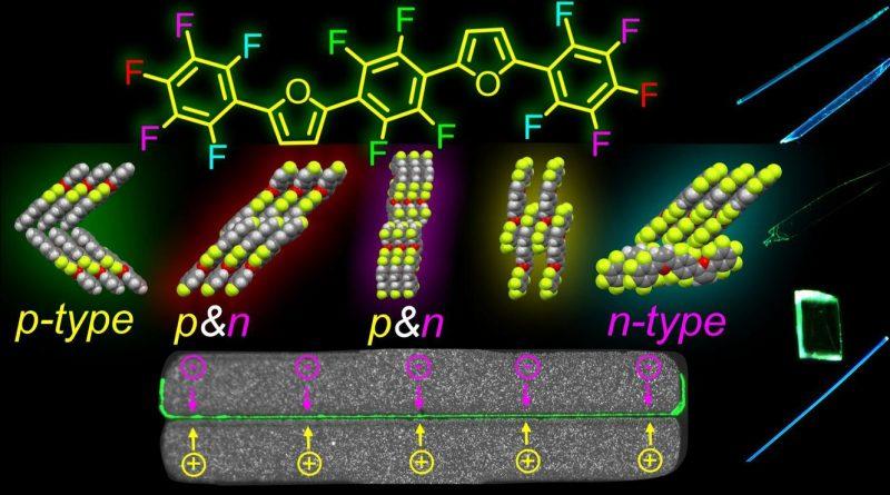Сотрудники кафедры в составе группы исследователей получили новые органические материалы, которые могут одновременно излучать свет и проводить заряды